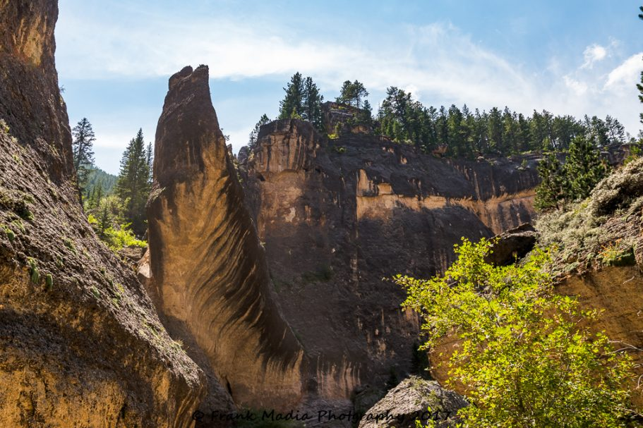 2017-07-23-Drive-Up-Crazy-Woman-Canyon-Big-Horn-Mountains-Wyoming010